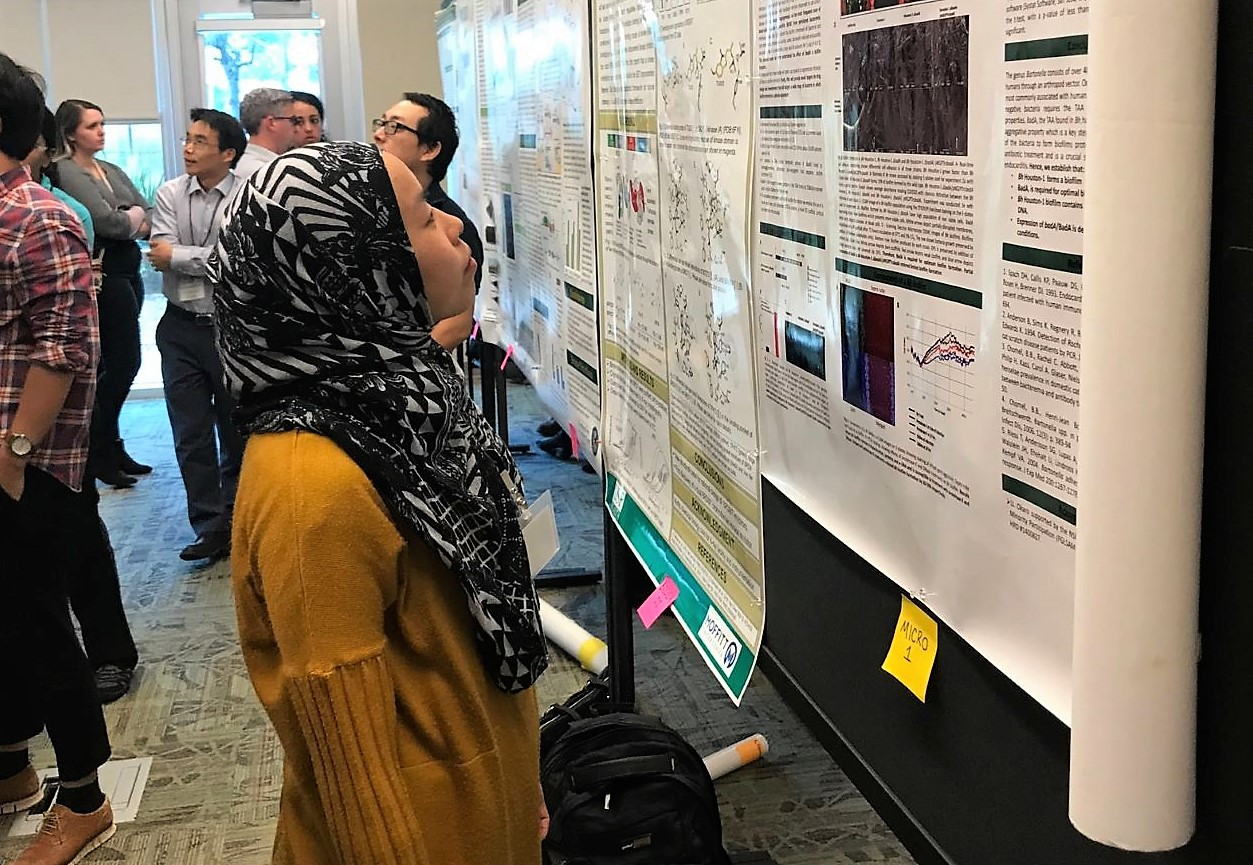 PhD student looks at research poster