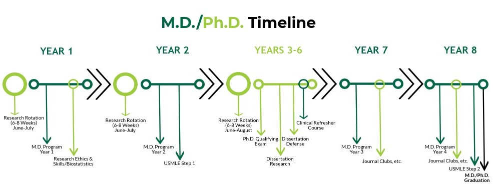 MD/PhD Policies | USF Health