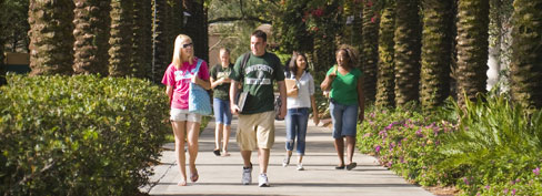 Students walking on the USF Campus