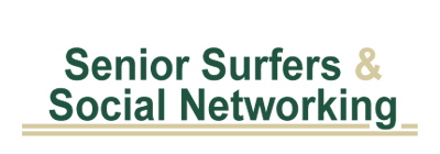 senior surfers and social networking