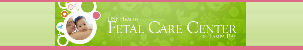 Fetal Care center Banner Graphic