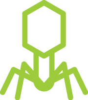 allergy immunology and infectious diseases icon - virus icon