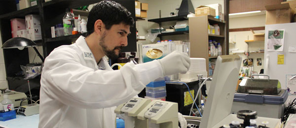 Ph.D. student working inside of a lab.