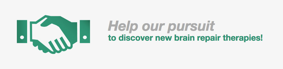 Help our pursuit to discover new brain repair therapies!