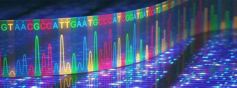 Genomics Usf Health