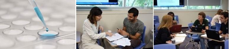 Doctor of Public Health (DrPH) | USF Health