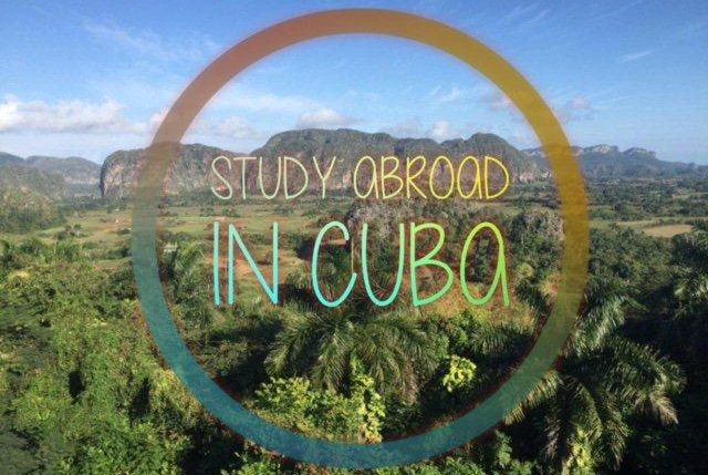 For U.S. College and University Students   USA StudyAbroad