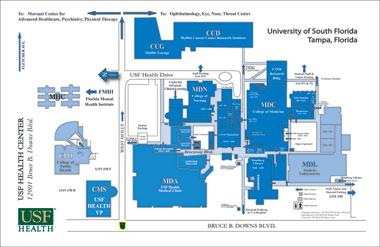 Tampa Florida On Map.Usf Health Maps Directions Usf Health